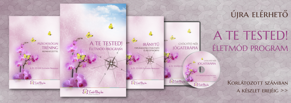 A TE TESTED! Életmód Program