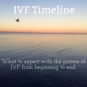 ivf timeline