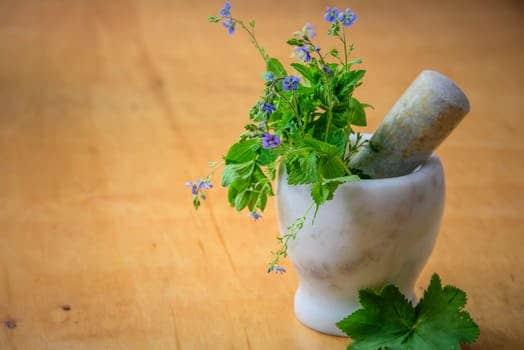 Endometriózis diéta recept-vegán pesztó